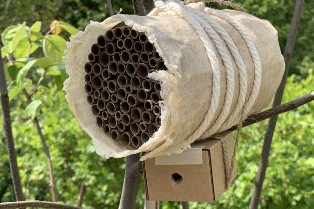Wildbienenhotel bzw. ein Insekthotel ganz schnell für den eigenen Garten selber bauen, am Besten gemeinsam mit euren Kindern.