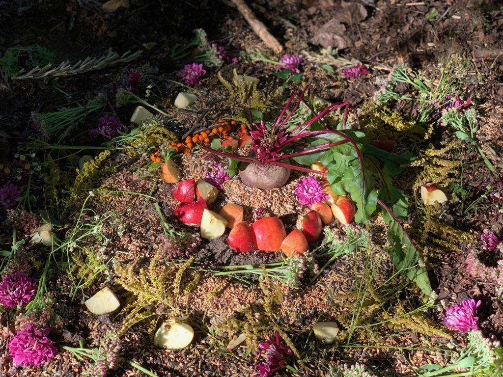 Die Herbst-Tag-und-Nacht-Gleiche. Erntedank feiern im Jahreskreis und ein Mabon-Ritual für die ganze Familie